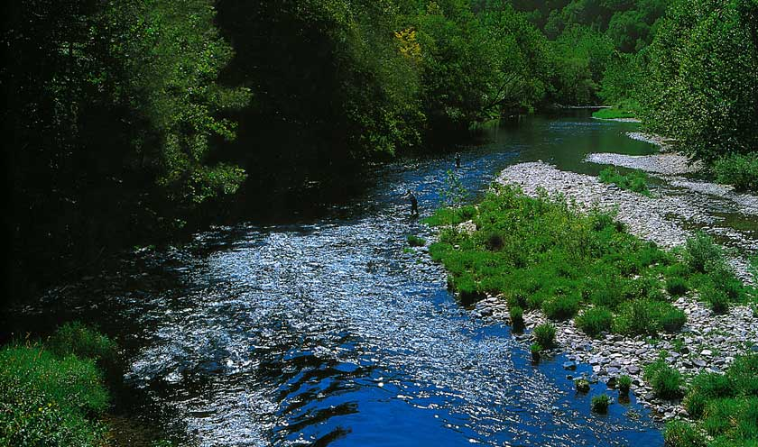 Land of Little Rivers: A Story in Photos of Catskill Fly Fishing. By Austin McK Francis